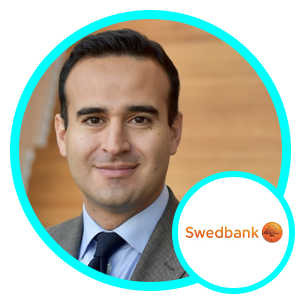 Nima Ghorbani, Head of Analytics and AI, Swedbank group